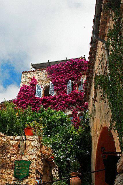 Flores na Rua - Eze, France