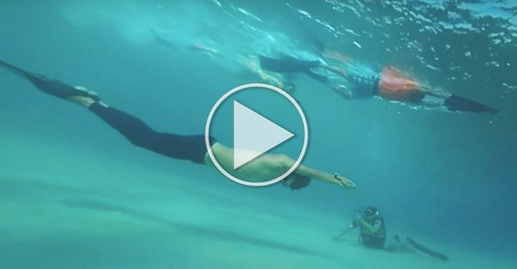 Verdens længste dyk på ét åndedrag er imponerende langt