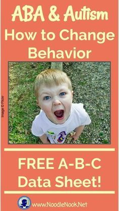 ABA & Autism- I'm printing this for my paras and I to talk about on the first day of school!!!