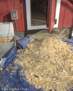 5 Tips for a Cleaner Chicken Coop with Less Effort!