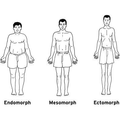 Dress ectomorph body endomorph types mesomorph different bodycon on zero jersey