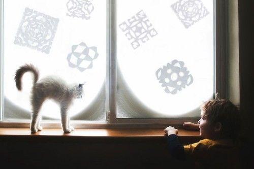 Детство на пару с кошкой -   Находить интересные имена и интересно и невероятно сложно. Ведь не зря говорят о том, что в мире есть всего три (пять, семь) сюжетов. а может быть всё намного проще? Вот фотограф и мама троих мальчиков Бет Манкузо (Beth Mancuso) делится интерес�