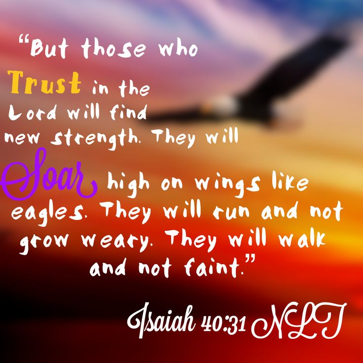 Isaiah 10:31 Fly with wings like eagles🦅