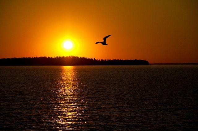Dog Island Sunset, near Slave Lake, Alberta   Flickr - Photo Sharing!