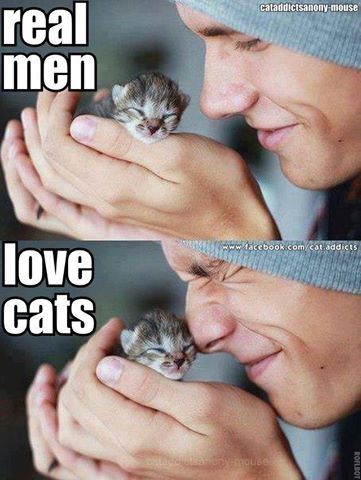 Men with cats. Real men love cats. And clean the litter ;-)..