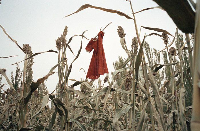 L'épouvantail, Shanshan, 2003. Claudine Doury.  http://www.claudinedoury.com
