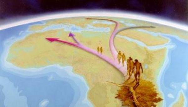 la migration de l'homme pendant l'ère glaciaire