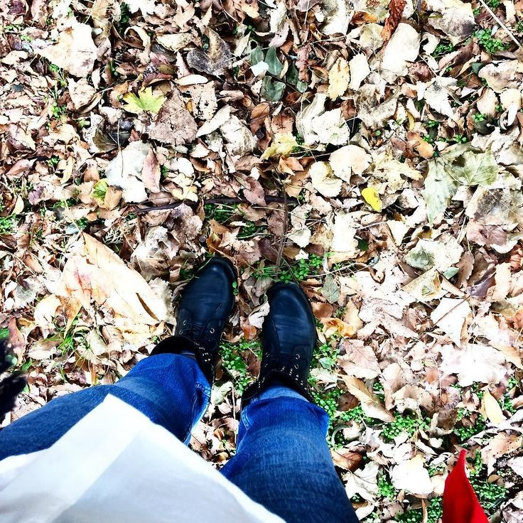 #fall #autumn #leaves #TagsForLikes #falltime #season #seasons #instafall #instagood #TFLers #instaautumn #photooftheday #leaf #foliage #colorful #orange #red #autumnweather #fallweather #nature