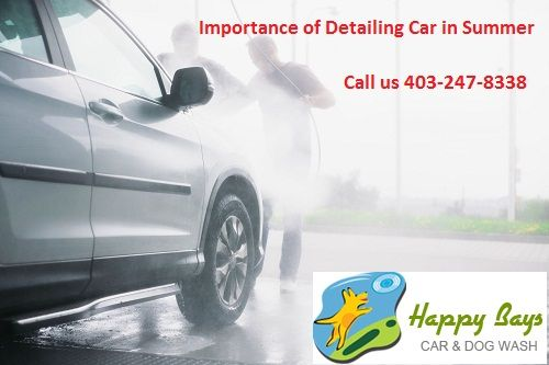 Detailing car during summer prevents the color from fading. In addition, it sets the right resale value. Read the blog to know the importance of #detailingcar in Summer.
