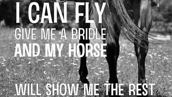1000+ Equine Quotes on Pinterest   Horse riding quotes ...