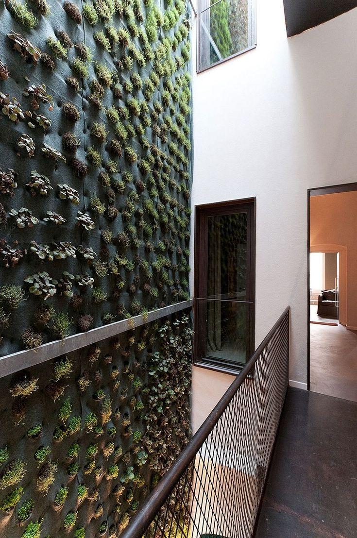 118 best living walls images on pinterest   vertical gardens