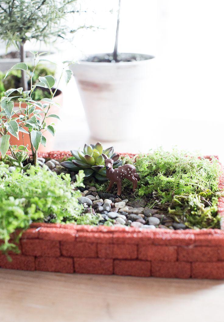 17 best ideas about indoor fairy gardens on pinterest for Indoor mini garden ideas