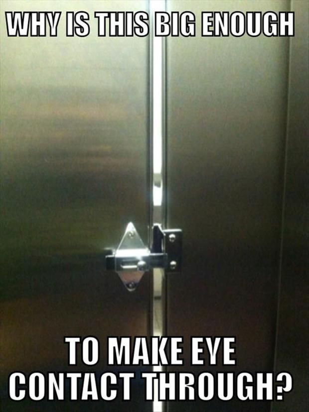 Funny Pics Of The Day
