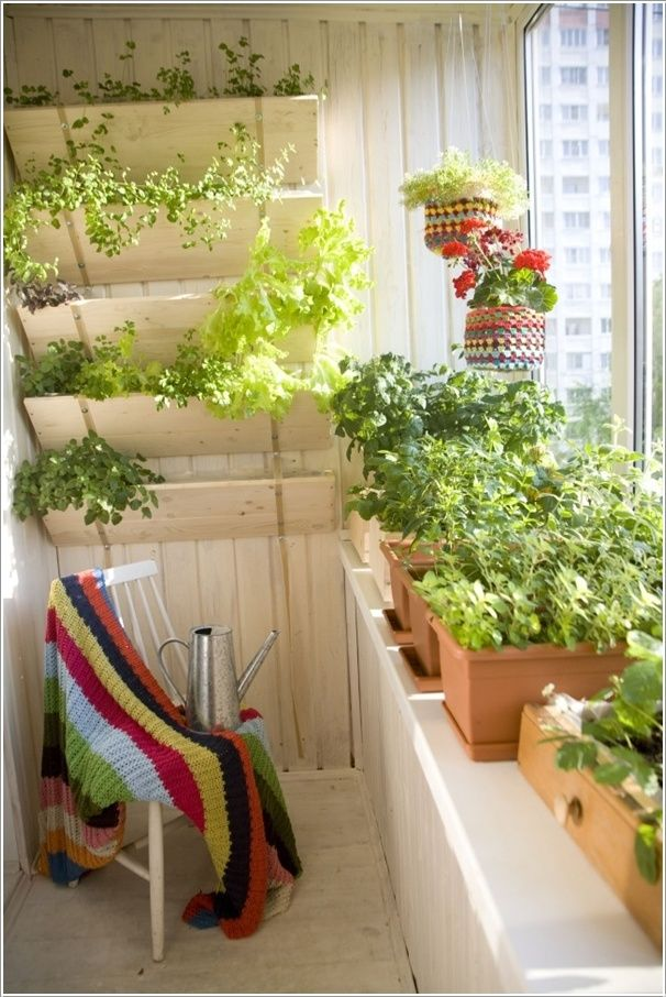 Vegetable garden porch veranda balcony deck sunroom for Balcony vegetable garden