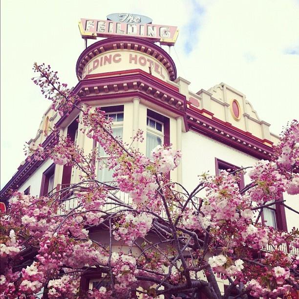 #feilding #hotel #heritage #architecture #nz #newzealand #instagram