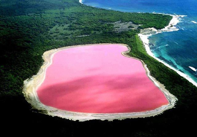 Lake Hillier Lago Rosa...  pink lake Australia & safe to swim in