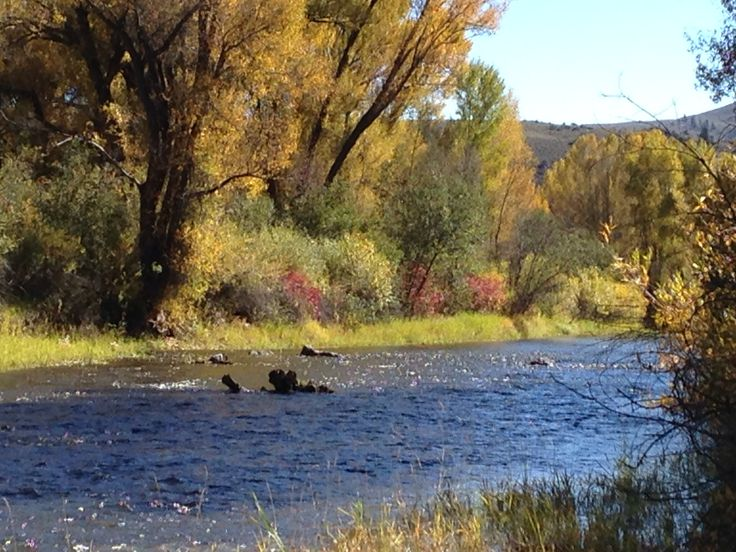 Gunnison river colorado flyfishing pinterest rivers for Gunnison river fly fishing