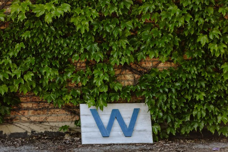 "Chicago Cubs ""W"" flag made of distressed pine!"