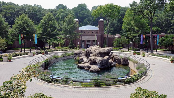 Best Zoos and Aquariums for Families in New York City - Mommy Nearest