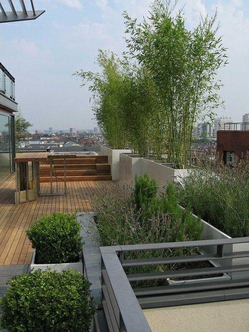 designer dachterrasse - natürlicher sichtschutz