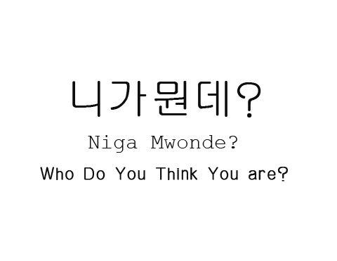 니가뭔데? niga mwonde Who do you think you are?