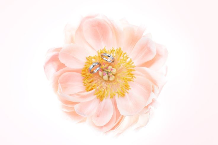 tresor #NOVARESE #wedding #accessory #ring #original