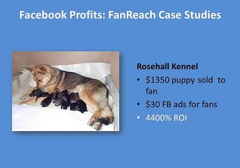 Rosehall Kennel: 4400% ROI  Eliot and Emily Roberts of Rosehall Kennel breed German Shepherds. They spent just $30.00 growing their fan base before they sold their first puppy. Each puppy goes for $1,350.