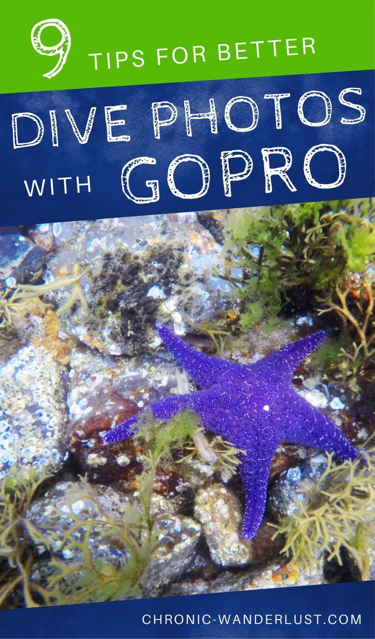 9 Tips how to take better dive photos with your GoPro camera #GoPro #Scuba #Scubadiving #Diving #Photography #uwphotography #underwater | Find out how to master photography in the #water! I have had the pleasure of partaking in many #fun diving #adventures, and want to share my 9 tips to help you photographically document your scuba adventures too!