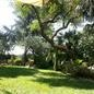 foursquare - my garden