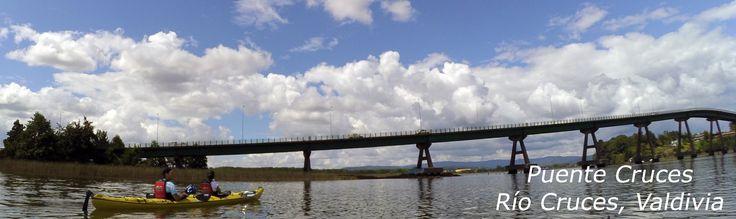 Visita los Humedales Urbanos de Valdivia. Actividades en Kayak de travesía por los extensos Ríos de esta hermosa Región.
