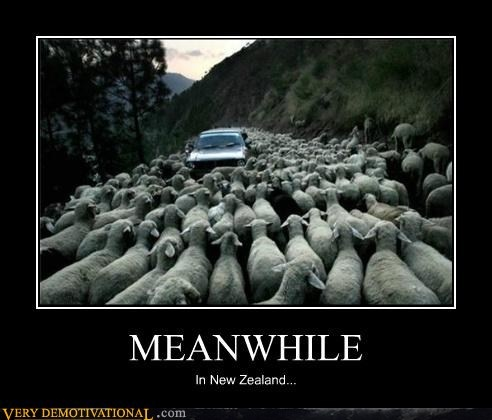 describing traffic jam essay