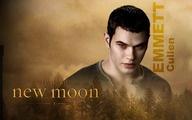 Emmett from Twilight