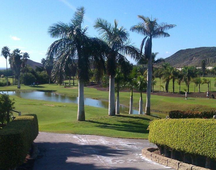 Afortunadamente cada día más los campos de golf de Canarias se cuidan con productos naturales.