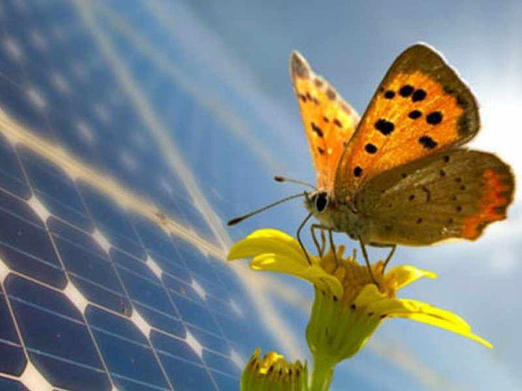 Energia: senza spreco si ferma anche la CO2