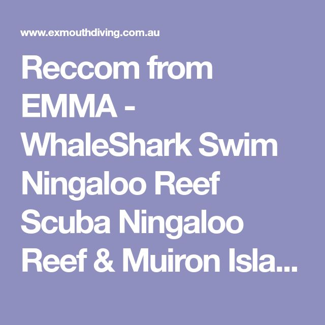 Reccom from EMMA - WhaleShark Swim Ningaloo Reef Scuba Ningaloo Reef & Muiron Islands Padi Dive Course
