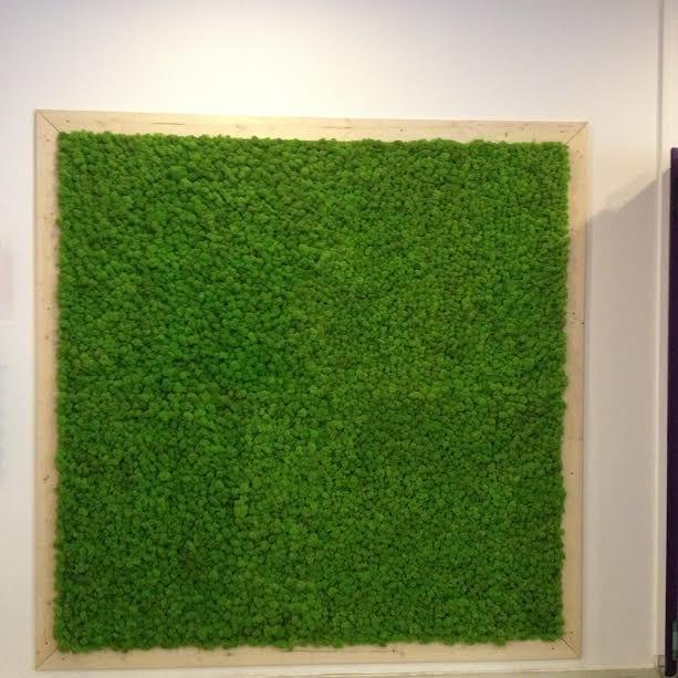 Skandináv tartósított zuzmófal egy cég ebédlőrészében került elhelyezésre.Minden dolgozó nagy örömére egy kis zöld természetes közegben ebédelhetnek.