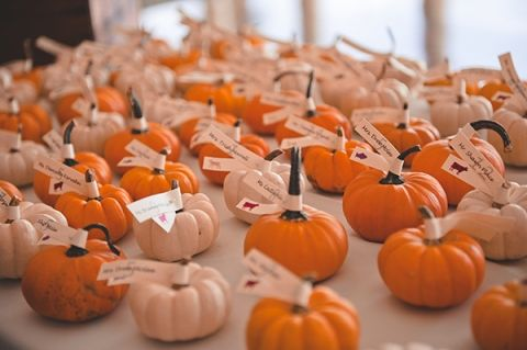 A Pumpkin Patch Escort Card Display | Bit of Ivory Photography | Traditional Autumn Wedding in Eggplant and Orange