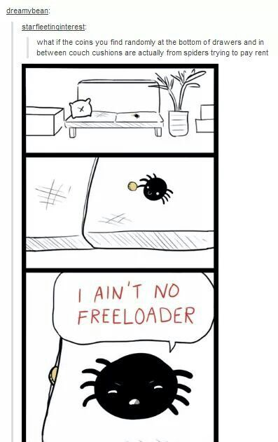 With all the spiders and pennies in this house, makes sense.