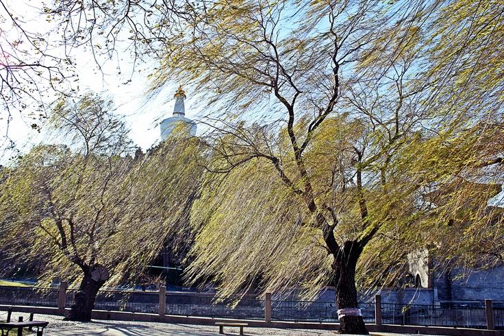 #Beijing Beihai Park, White Pagoda #China #traveling