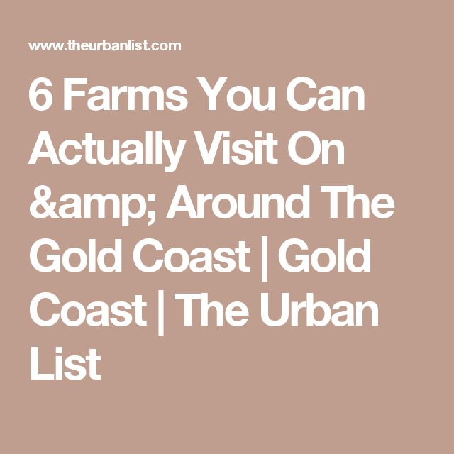 6 Farms You Can Actually Visit On & Around The Gold Coast | Gold Coast | The Urban List