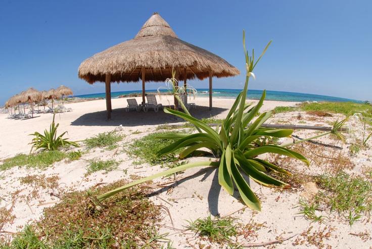 Punta Morena Restaurant, Cozumel