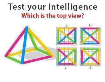 Tell Your intelligence Which is the Top View?