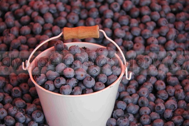 Blueberries in market in Finland :)