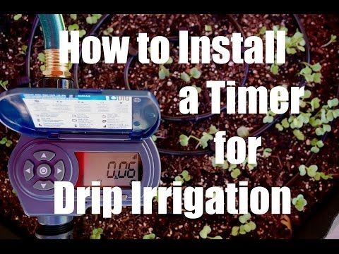 Want some time back?  Automate your garden watering by installing timer for your drip irrigation system.  Quick and easy - and  frees up your time so you can  do other fun garden activities!