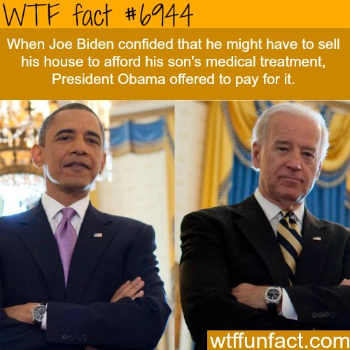 Joe Biden and Obama - WTF fun fact