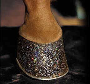 Glittery hooves.  For the horse that wants to stand out...Horses Hoof, Glitter Horses, Two, Hoof Glitter, Things Horses, Horses Ponies, Animal Safe, Glittery Hooves, Equestrian