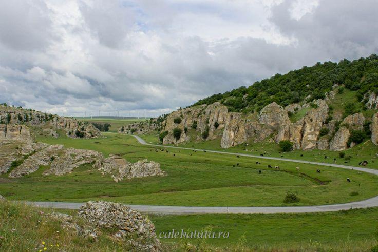 Cheile Dobrogei (în apropriere de localitatea Cheia - județul Constanța) http://www.calebatuta.ro/chei/25-cheile-dobrogei
