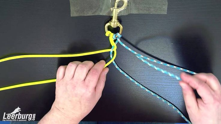 In this video, a couple of Leerburg employees demonstrate how to make a durable dog leash out of a paracord. Supplies: - Paracord (lengths vary on size of le...