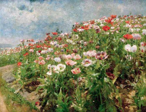 Flowering Poppies, Olga Wisinger-Florian