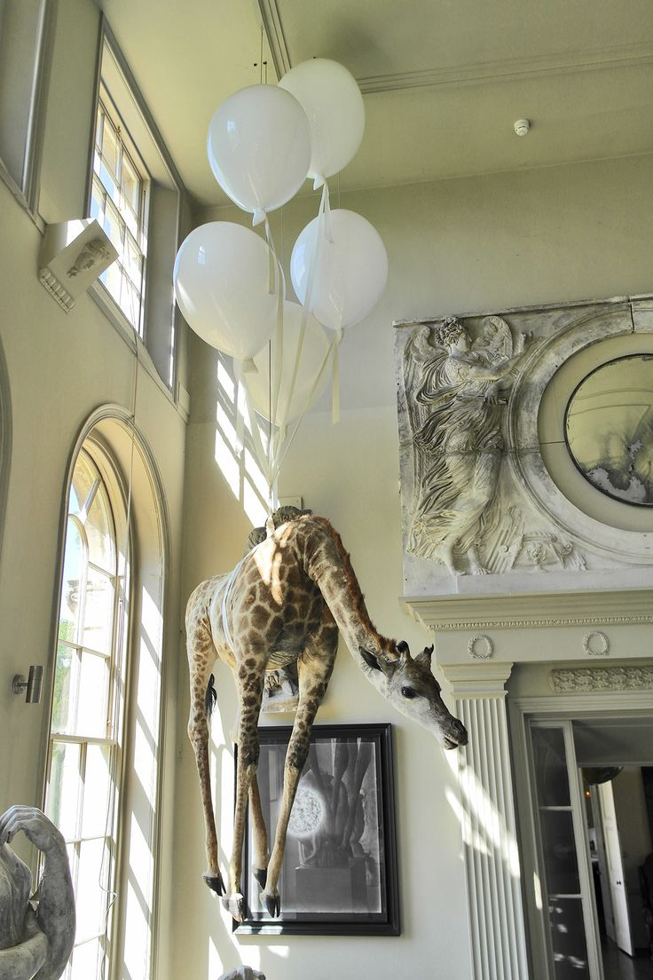 Taxidermy giraffe, suspended by monumental glass balloons - by James Perkins Studio. About James Perkins Studio